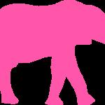 Blog-over roze olifanten en lijken in de kast-Merlijn Groep