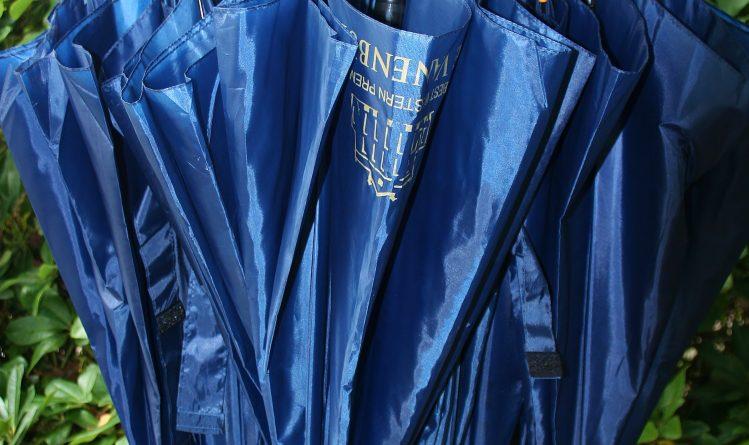 Paraplui-blauw-regen-Merlijn Groep