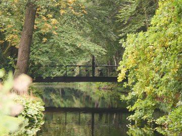 Foto-Groen park- brug-Merlijn Groep