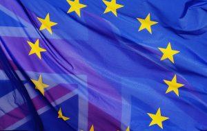 referendum - Blog - Merlijn Groep